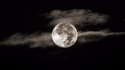 ¿Qué pasaría si la Luna nunca hubiera existido?