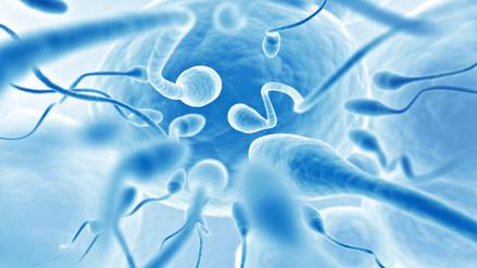 Los hombres con voz grave tienen menor calidad de esperma