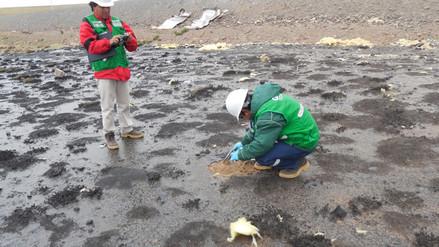 La OEFA supervisa derrame de petróleo y brea en Caylloma