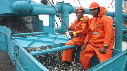 Produce dispone pesca experimental de la anchoveta para optimizar su captura