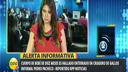 Huachipa: hallan cadáver de bebé enterrado en criadero de gallos