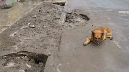 VMT: obra de la Municipalidad de Lima perjudica a vecinos