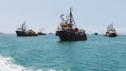Produce autoriza primera temporada de pesca de anchoveta en zona sur