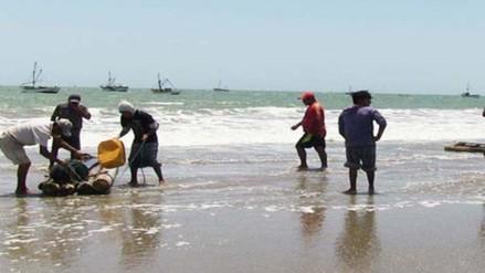 Pescadores permanecen detenidos por realizar faenas en Reserva de Paracas