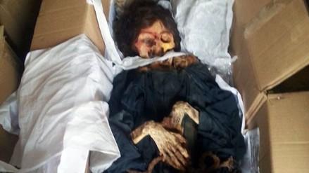 Huaura: hallan momia de mujer tatuada en el distrito Santa María