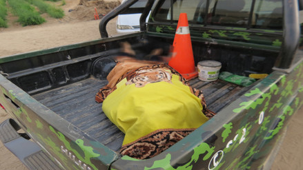 Huaura: hombre muere ahogado al intentar salvar a su mascota