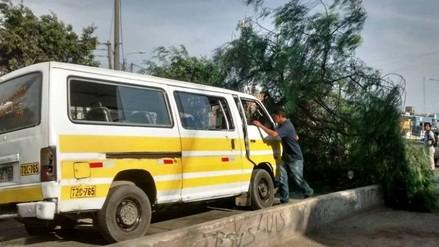 Trujillo: combi impacta contra árbol y deja siete heridos