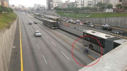 Lima: Ciclista invade carril del Metropolitano