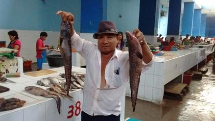 Fenómeno El Niño: precio del pescado registra una notoria reducción