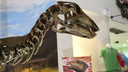 Descubren dinosaurio en Tailandia y le dan nombre de realeza