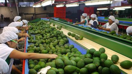 ¿Qué región peruana exportó más durante el 2015?