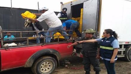Policía decomisa más de 3 mil kilos de caballa sin las tallas reglamentarias