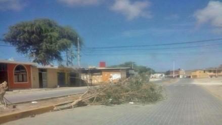 Piura: árboles bloquean vía por celebración de carnavales