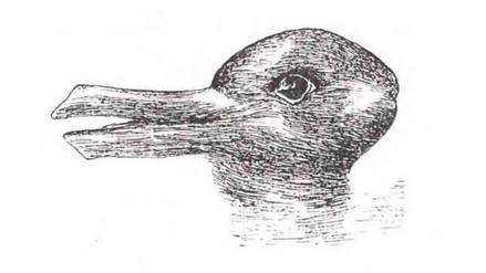 Facebook: ¿Qué animal ves en esta curiosa imagen? Este es el nuevo reto viral