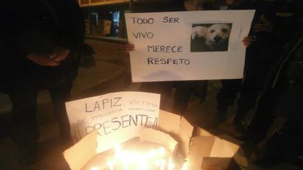 Activistas realizaron vigilia por perro atropellado por comitiva de PPK