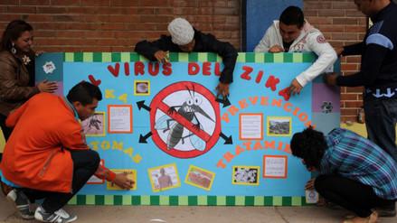 Zika: OMS estima necesario US$ 56 millones para afrontar el virus