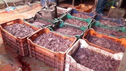 Huancayo: intervienen fábrica clandestina que procesaba embutidos