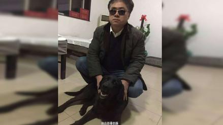 Ladrones se arrepienten de robar un perro guía y lo devuelven a su dueño