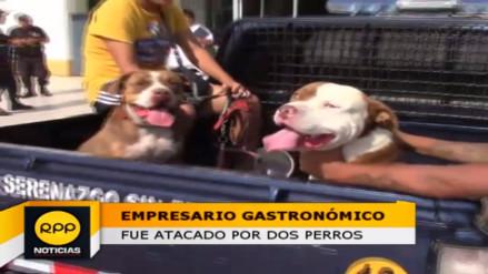 Huacho: dos perros pitbull atacan a empresario cevichero