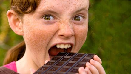 Crean un chocolate con carne de erizo y estrellas de mar que alarga la vida