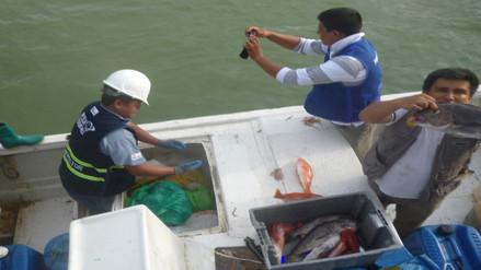 Produce decomisó 600 kilos de pescado a embarcaciones ecuatorianas