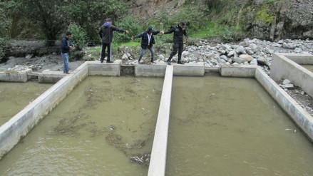 Pallasca: huaico arrasa con piscigranjas de truchas