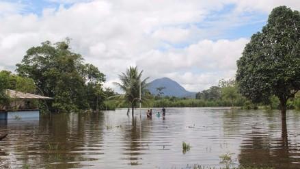 Moyobamba: desborde del río Mayo inunda cultivos de arroz