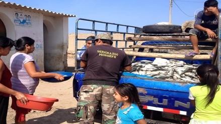 Decomisan 20 toneladas de recursos marinos por pesca ilegal