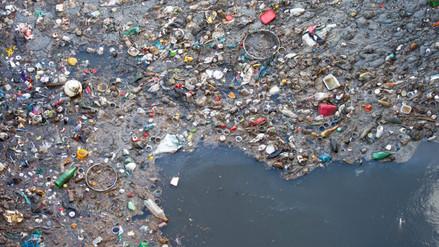 Hallan bacteria capaz de degradar el plástico que contamina el medioambiente