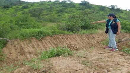 Ministerio Público constata tala ilegal en zona ecológica de Chaparrí