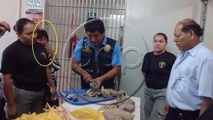 Chiclayo: mujer pretendía ingresar droga al penal camuflada en papas