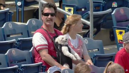 YouTube: un hombre y su perro se roban el show durante un partido de béisbol