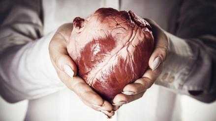 Desarrollan tratamiento para alargar la vida de órganos trasplantados