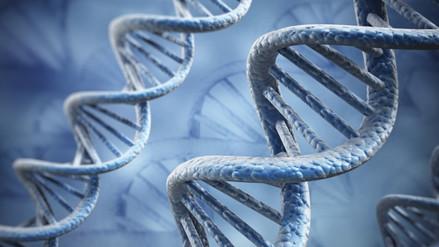Reparación del ADN es una clave para la lucha contra el cáncer