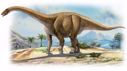 Gigantescos Rapetosaurus adquirían enseguida proporciones de adulto