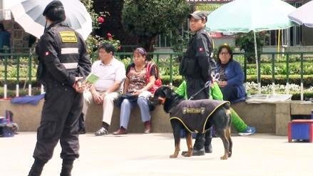 Huancayo: trasladan a Serenazgo canes que atacaron a un menor