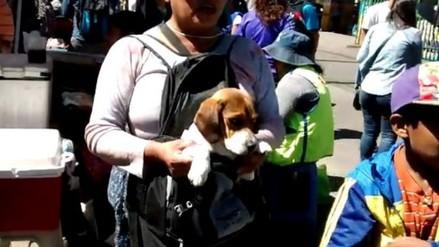 Asociación Protectora realiza plantón contra venta ilegal de animales