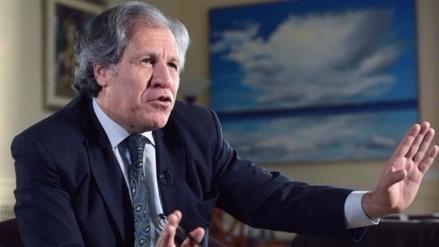 OEA: Almagro estudia invocar Carta Democrática a Venezuela