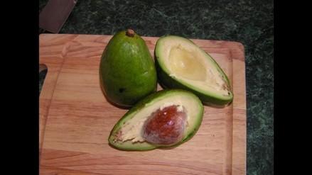 Palta: 7 beneficios de consumir esta fruta