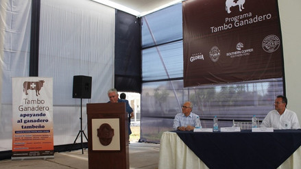 Southern Perú: existen menos grupos antimineros en Islay