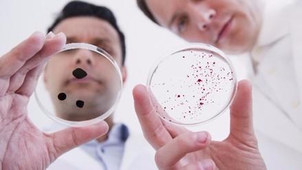 En la Tierra pueden vivir un billón de especies, en su mayoría microbios