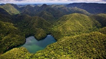 ¿Qué es un área natural protegida? Te lo explicamos así de claro