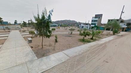 ¿Cuántos árboles faltan en Lima? Cifras de espanto...