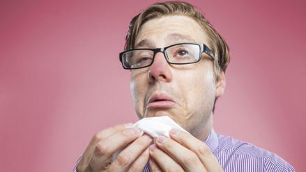 Estos alimentos elevan tus defensas frente a un resfrío