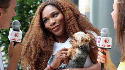 YouTube: Serena Williams probó la comida de su perro y terminó intoxicada