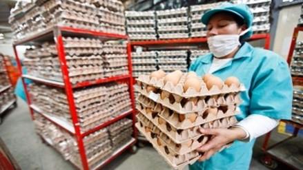 Oxfam: trabajadores de avícolas usan pañales para seguir produciendo
