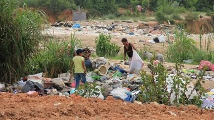Moyobamba: preparan brigadas para eliminación de criaderos de zancudos