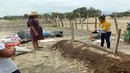 Mujeres emprendedoras siembran hortalizas orgánicas en el sector La Algodonera del distrito de Olmos