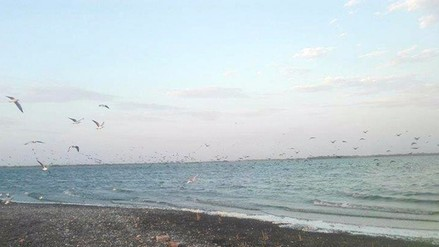 Piura: joven de Santa Clara desaparece en laguna Ñapique