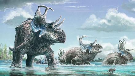 Estados Unidos: descubren restos de un dinosaurio que tenía cuatro cuernos